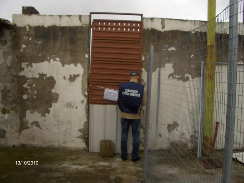 Galatina sequestrato canile privato il gallo for Galatina news cronaca
