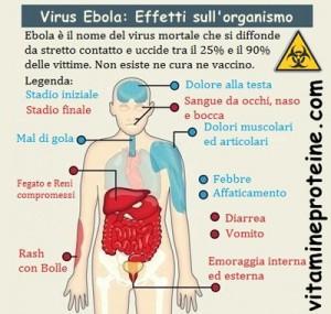 ebola effetti