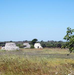 """Località """"Occhiazzi"""" a Ruffano, la zona interessata dal progetto di Parco Eolico"""