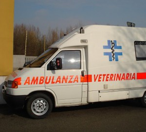 ambulanza-veterinaria