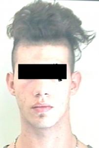 Luigi Rizzello, 19 di Patù, ideatore e promotore della rapina