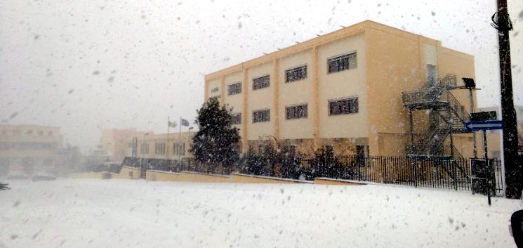 Liceo Scientifico di Tricase